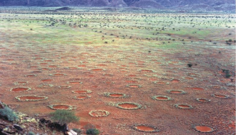 """Os """"círculos de fada"""" no deserto da Namíbia"""