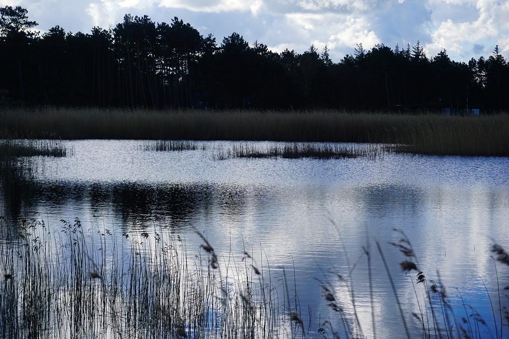 Cientistas suspeitam que brejos dinamarqueses eram locais de depósito de sacrifícios humanos para divindidades da Idade do Ferro