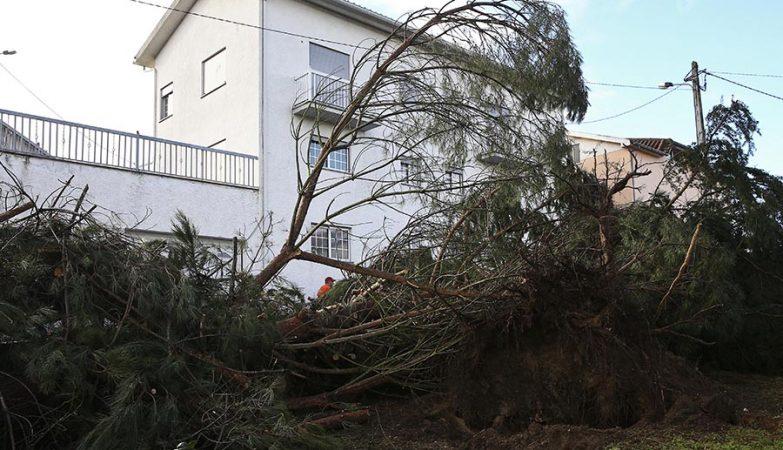 Ventos fortes em São Paio, Gouveia, na Guarda.