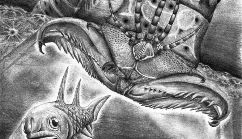Reconstrução artística do Websteroprion armstrongi a atacar um peixe