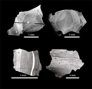 Os investigadores analisaram as diferenças de composição isotópica de cristais de quartzo recolhidos do vulcão Toba