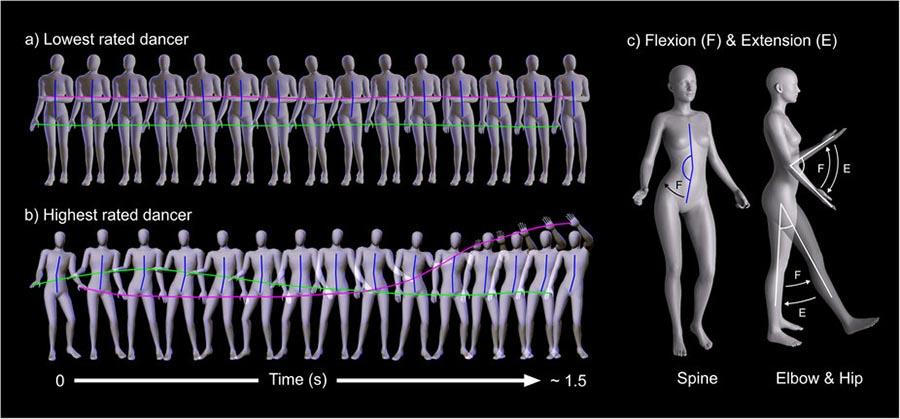 Em a) os movimentos das más dançarinas; em b) os movimentos que definem uma boa dançarina.