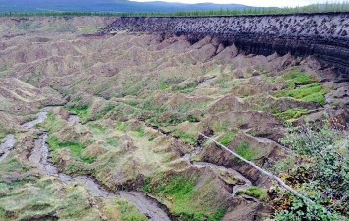 Camadas expostas com o degelo do permafrost indicam como eram clima, fauna e flora há 200 mil anos