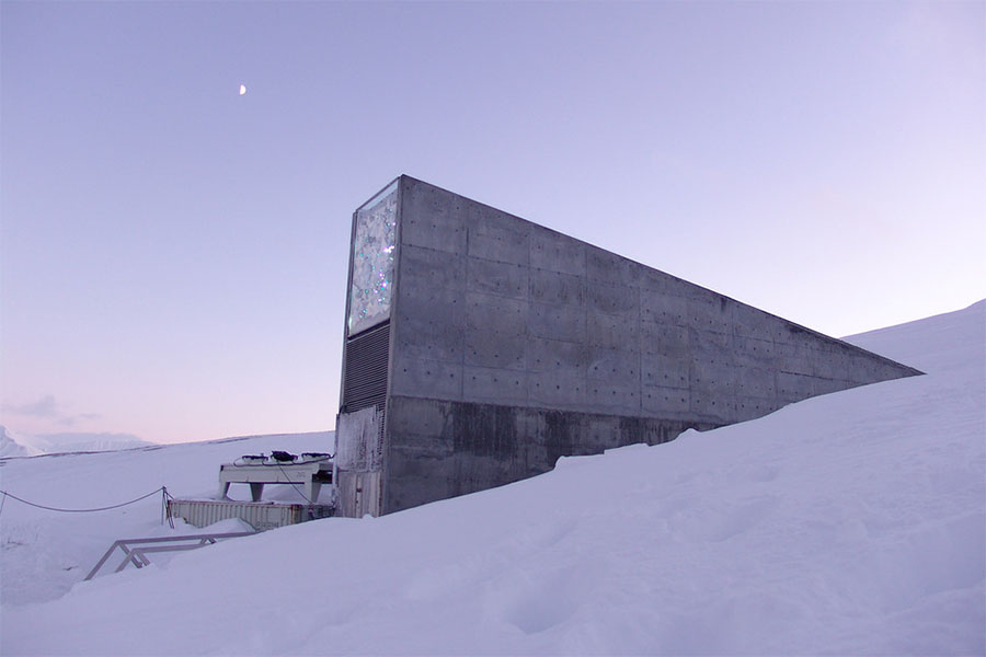 O Global Seed Vault, que preserva sementes, fica na mesma mina que o Arctic World Archive que preserva dados.