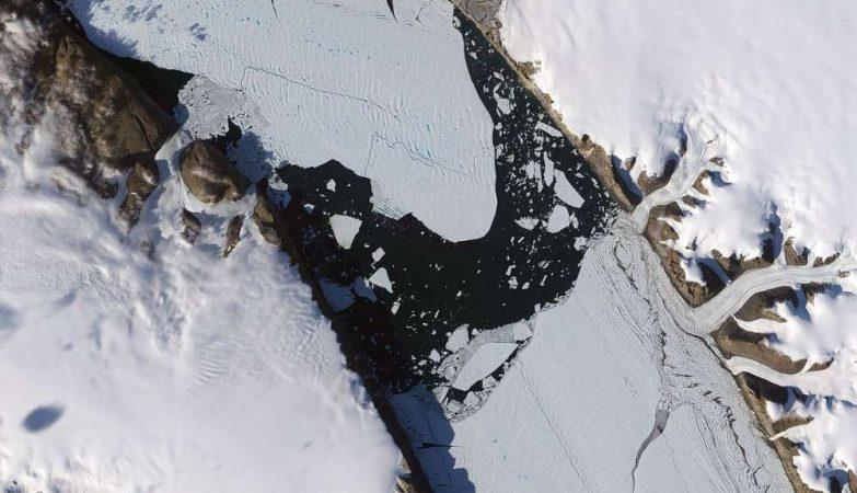 Imagens de satélite da ilha de gelo que surgiu em 2010. Na altura, tinha 260 quilómetros quadrados