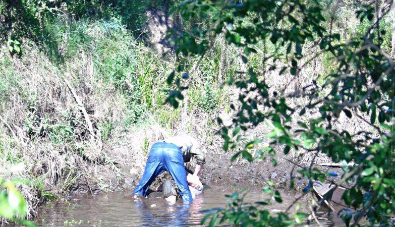 Homem apanhado em flagrante a tentar afogar a mulher no rio Águeda