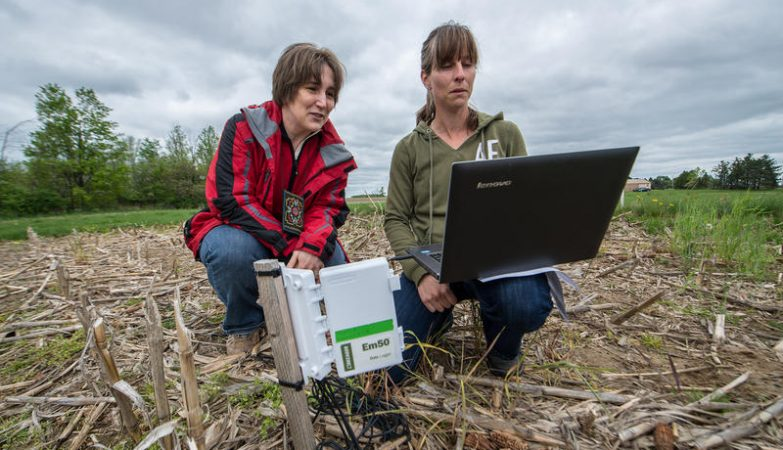 As investigadoras Sasha Kravchenko e Jessica Fry, da Michigan State University