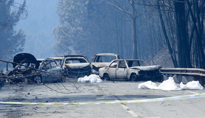 Pelo menos 30 pessoas morreram no interior dos carros no IC8 durante o incêndio em Pedrógão Grande