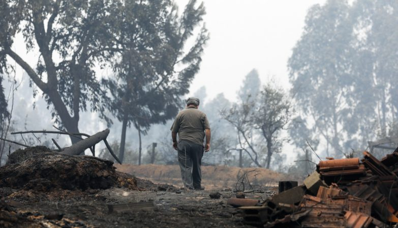 Rescaldo do incêndio em Valongo, Pedrogao Grande