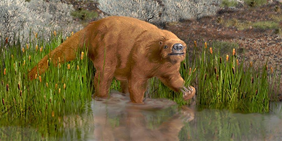Preguiças de solo da Idade do Gelo podiam atingir o tamanho de um elefante.