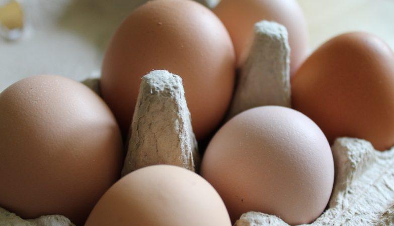 Afinal há ou não ovos contaminados em Portugal? Governo diz que não
