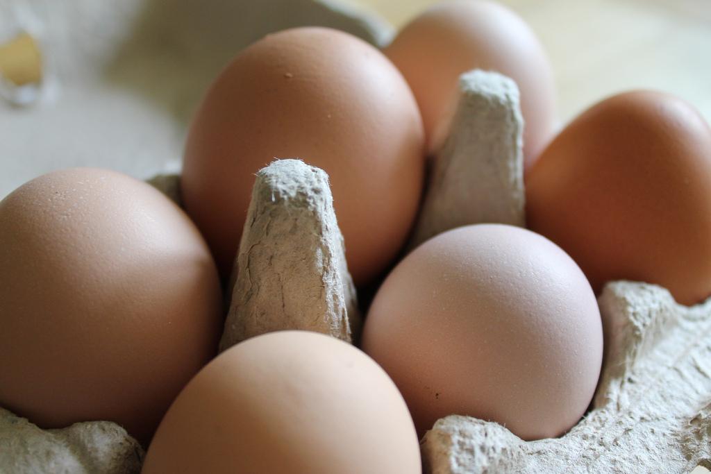 Portugal sem ovos contaminados, garante ASAE