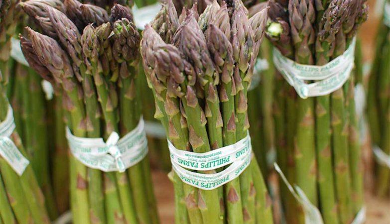 Entenda: Alguns alimentos podem favorecer a sobrevivência do câncer