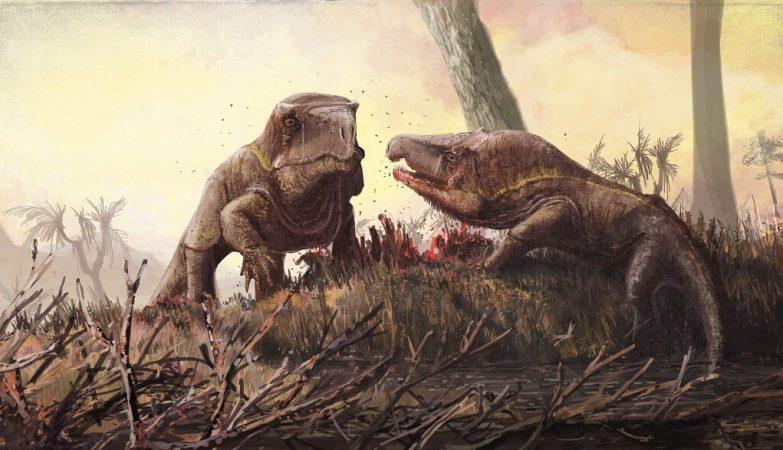 Predador mais antigo do que os dinossauros tinha uma