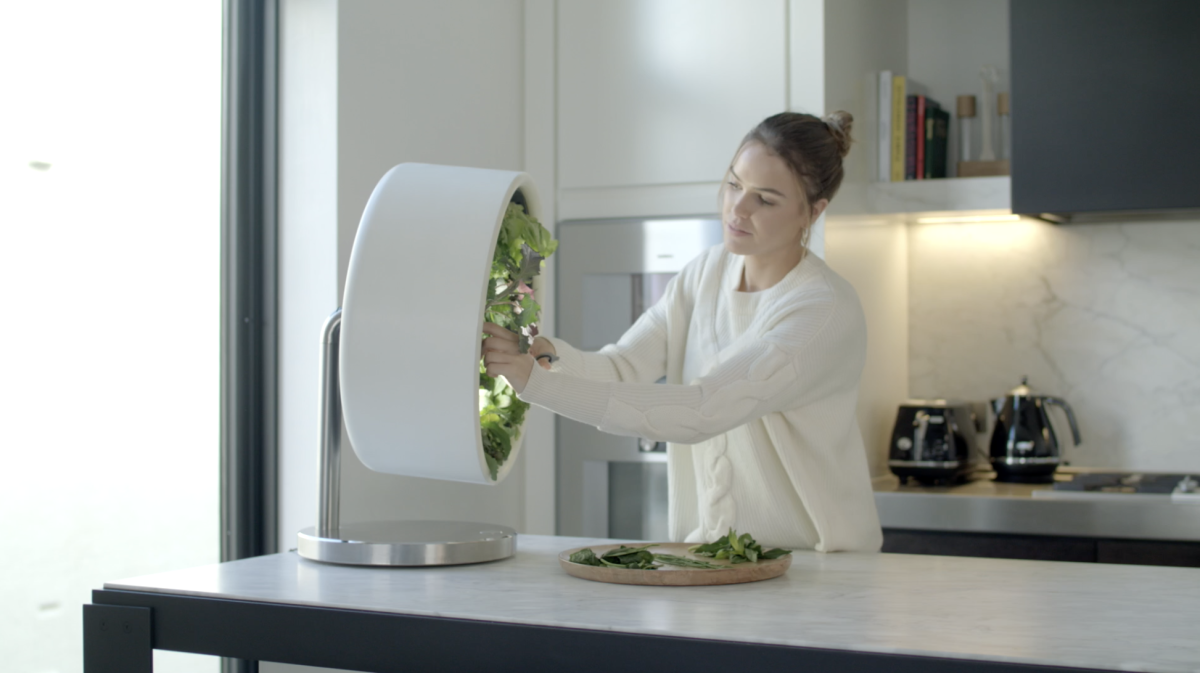 A kitchen garden in the kitchen. Rotating technology allows planting vegetables inside ...