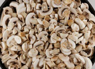 Cogumelos laminados